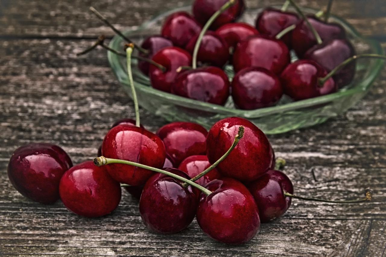 Фото вишни с бордовыми цветами