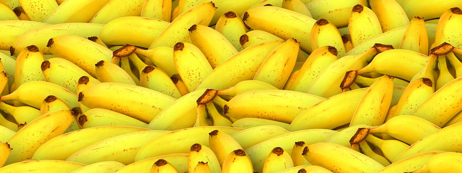 Banner, Fruit, Vegetarian, Natural