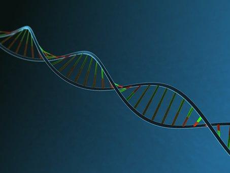 Dna, 体, ストランド, 分子, 生物学, 遺伝的, 遺伝子, 遺産, 科学