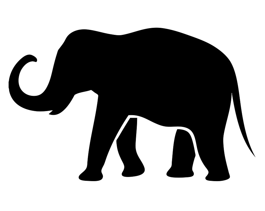 elephant silhouette animal nature mammal black