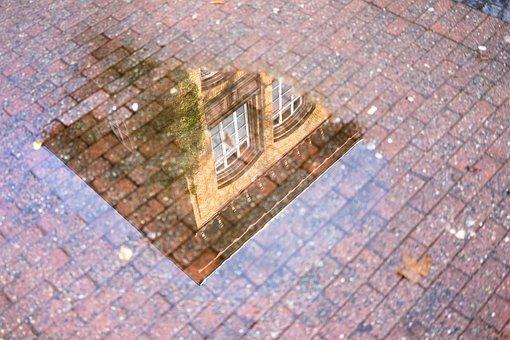 ミラー, 水たまり, 建物, アーキテクチャ, 雨, 水, ウェット