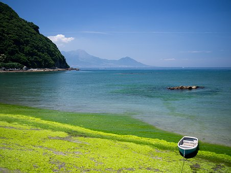 Kumamoto, Coast, Natural, Japan, Kyushu