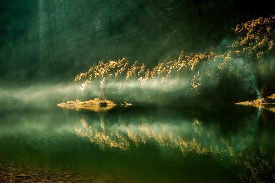 日の出, 朝, 湖, 水, 反射, 森林, 木, 林, 風景, 自然, アウトドア, 美しい, 霧, 緑の自然