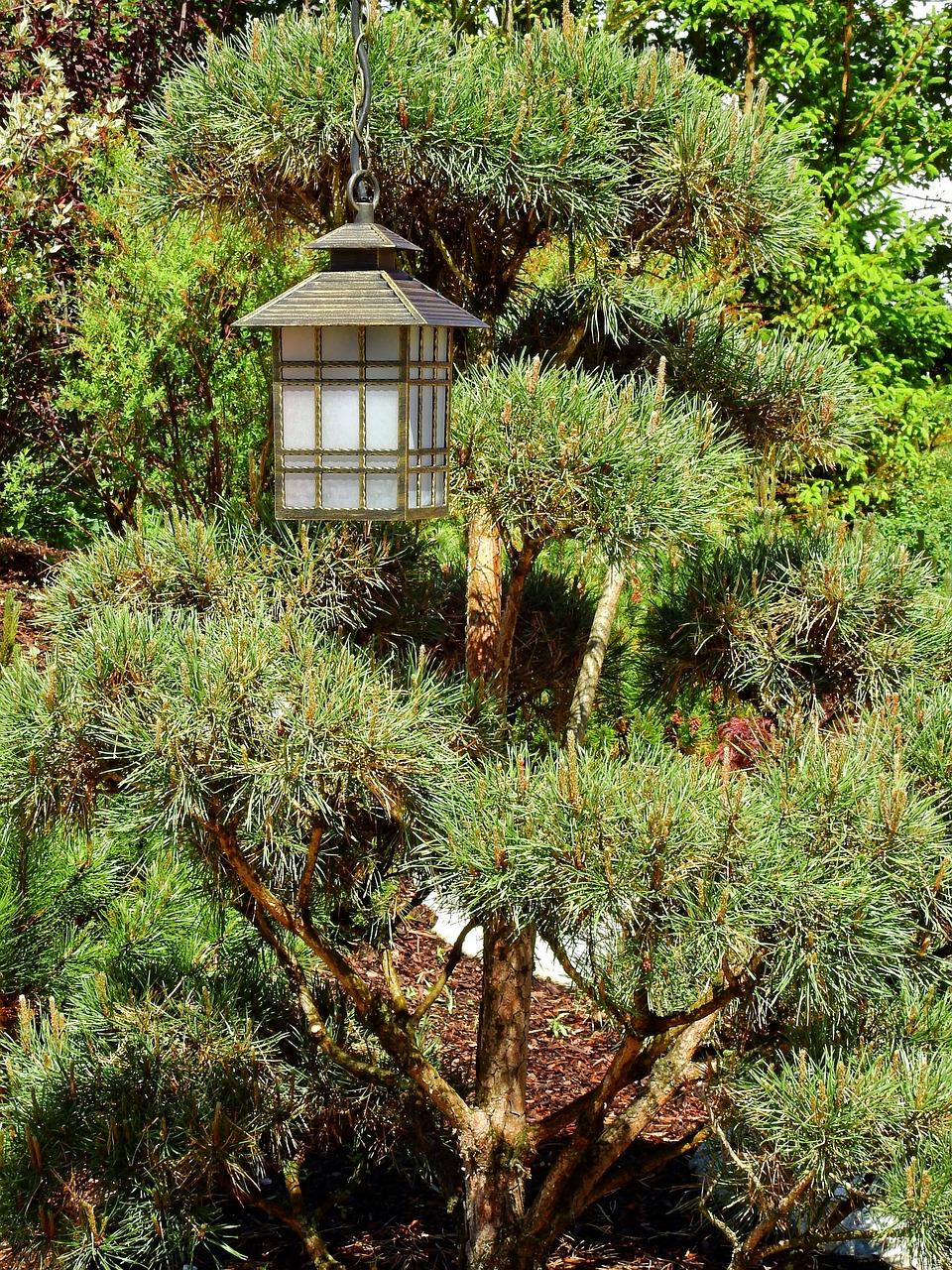 Japan Garden Japanese Free Photo On Pixabay