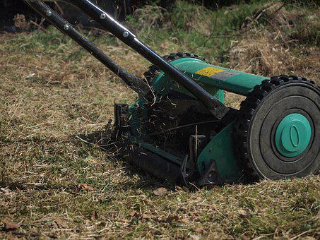 Lawn Mower, Mow, Lawn Mowing, Garden