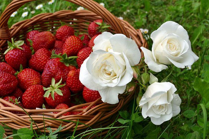 strawberries-2386610__480.jpg