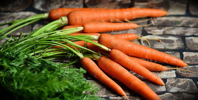 Carrots, Vegetables, Harvest, Healthy