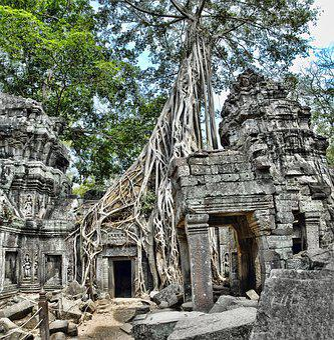 Ta Prohm, Camboya, Angkor, Wat