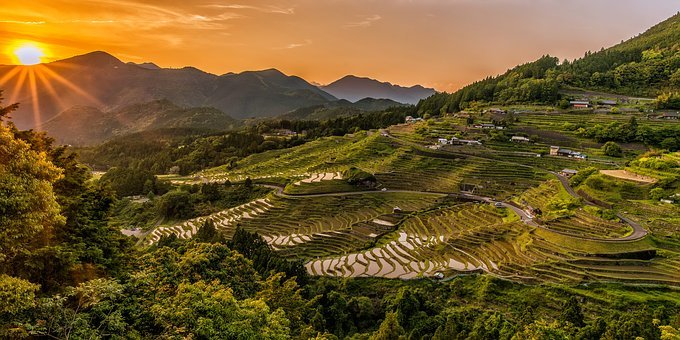 Landscape Rice Terraces Sunset Nature
