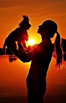Yorkie, Woman, Silhouette, Sunrise, Love