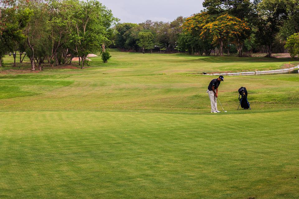 Golf, Course, Golfing, Golf Course, Green, Sport, Grass