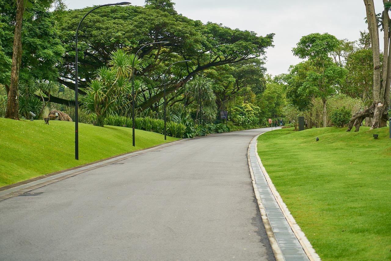Картинки парка с дорогой