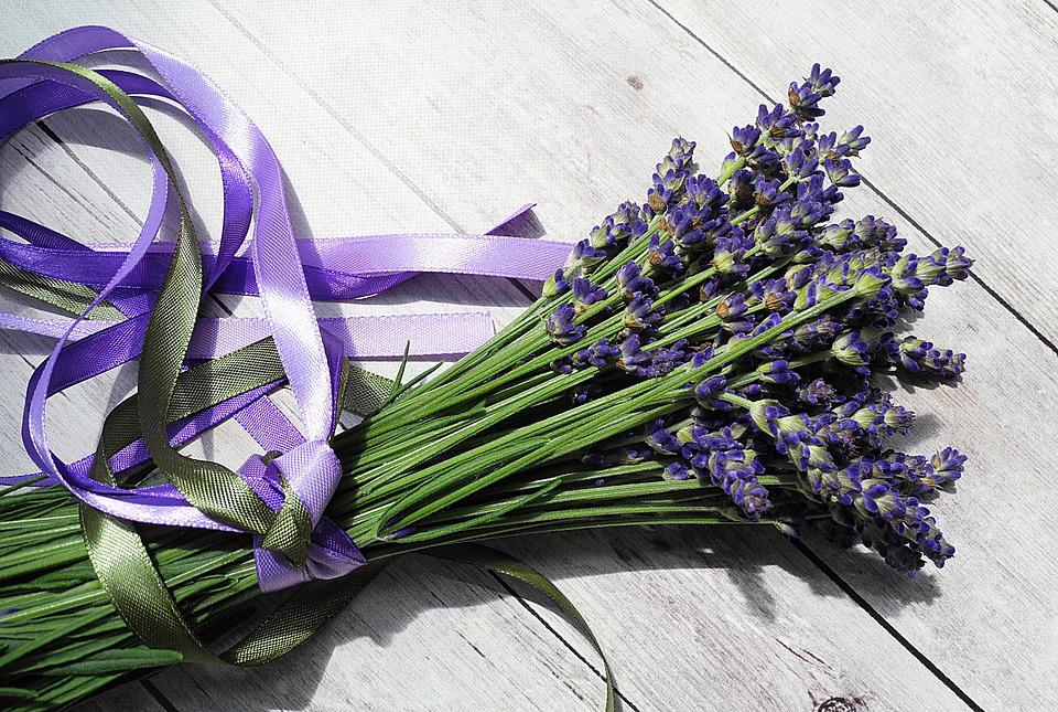 lavender, flowers  free images on pixabay, Natural flower
