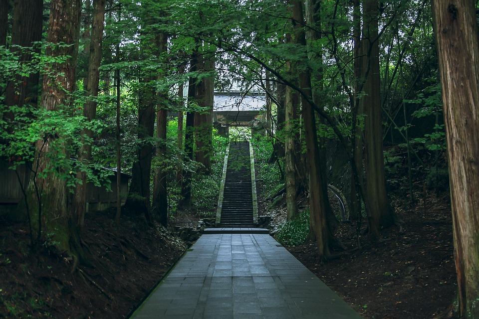 別所温泉, 静か, 自然, お寺