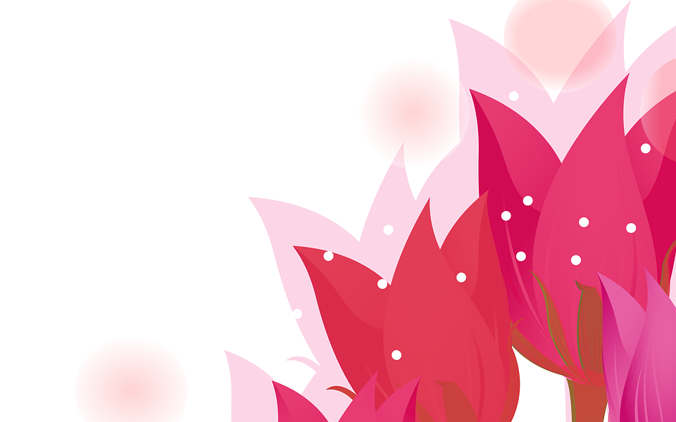 Free illustration: Flowers, Abstract, Pink, Background ...