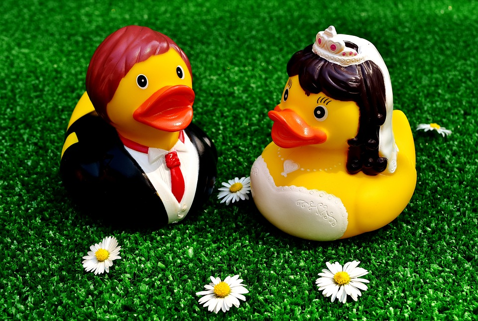 Rubber Ducks Images · Pixabay · Download Free Pictures