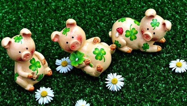 幸運な豚, 数字, かわいい, 運, Shamrocks, 幸運のお守り, 子豚