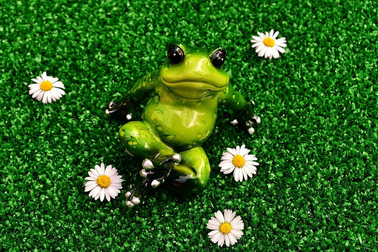 Милые лягушата картинки