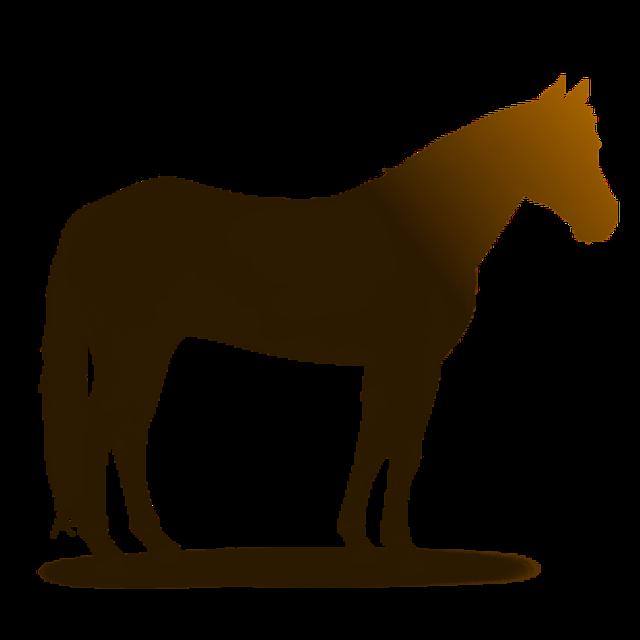 Pferd tiere zoo kostenloses bild auf pixabay - Clipart cheval ...
