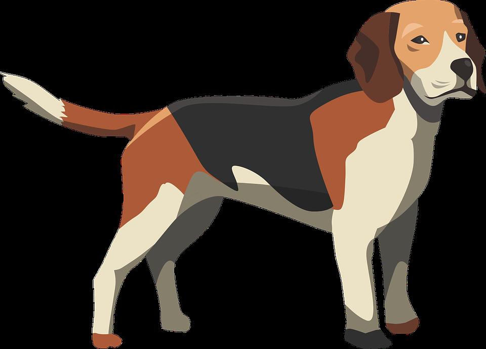 Dog Hound Mammal · Free vector graphic on Pixabay