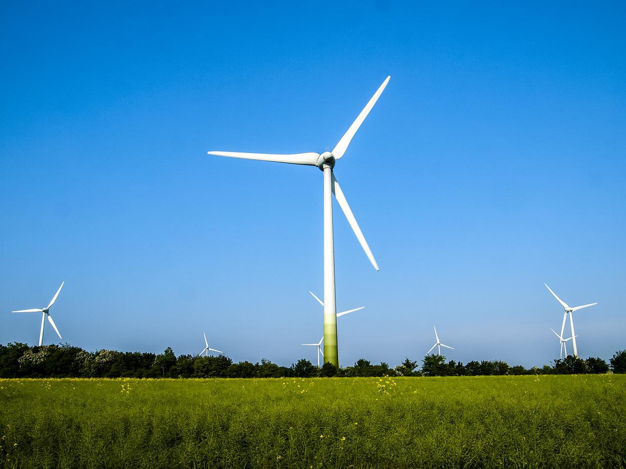 is wind power green Wind power offers a sustainable option in the pursuit of renewable energy.
