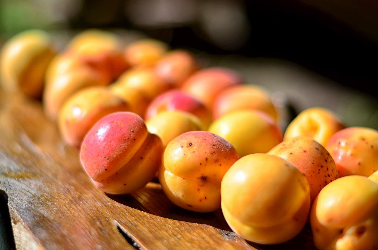 Картинки абрикосов, открытка
