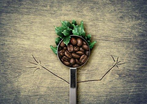 Kawy, Fasoli, Łyżka, Łyżeczki Do Kawy