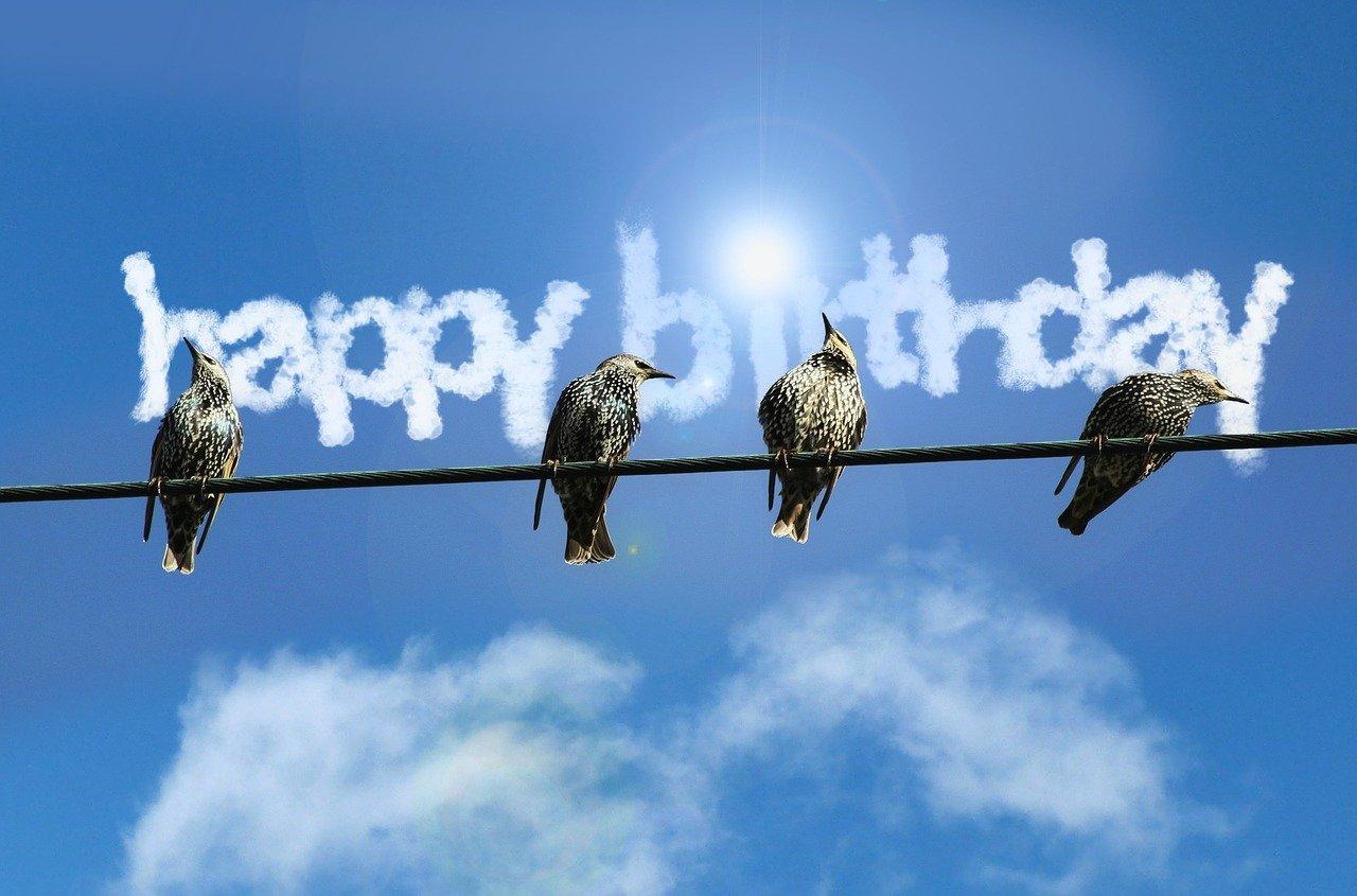 Открытка с днем рождения с птичками