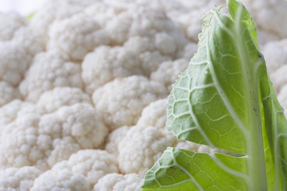 White cauliflower vegetable free photo on pixabay white cauliflower vegetable healthy diet fresh mightylinksfo