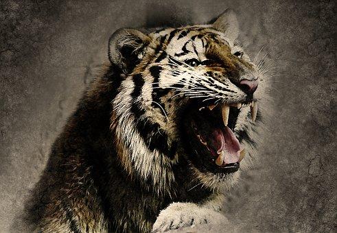 Tigre, Roar, Des Animaux, Art, Résumé