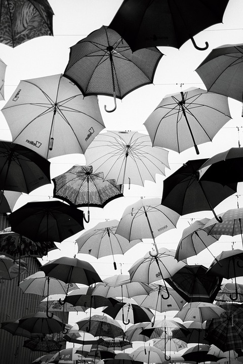Black And White Photography Umbrella