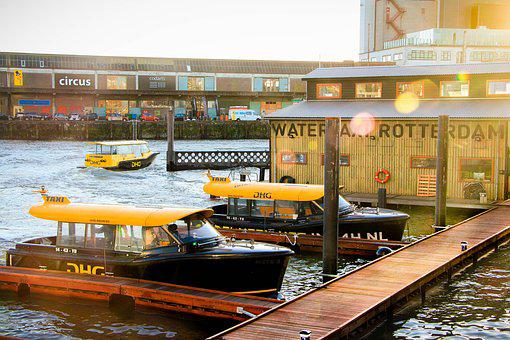 boats in the water in Rotterdam