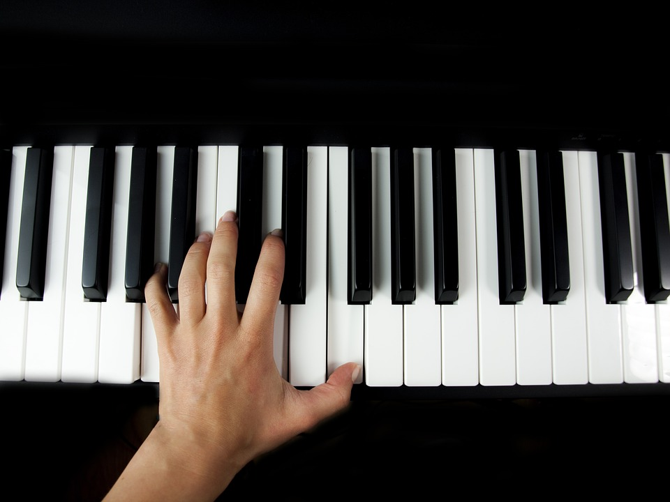 Keyboard Instrument Images Pixabay Download Free Pictures