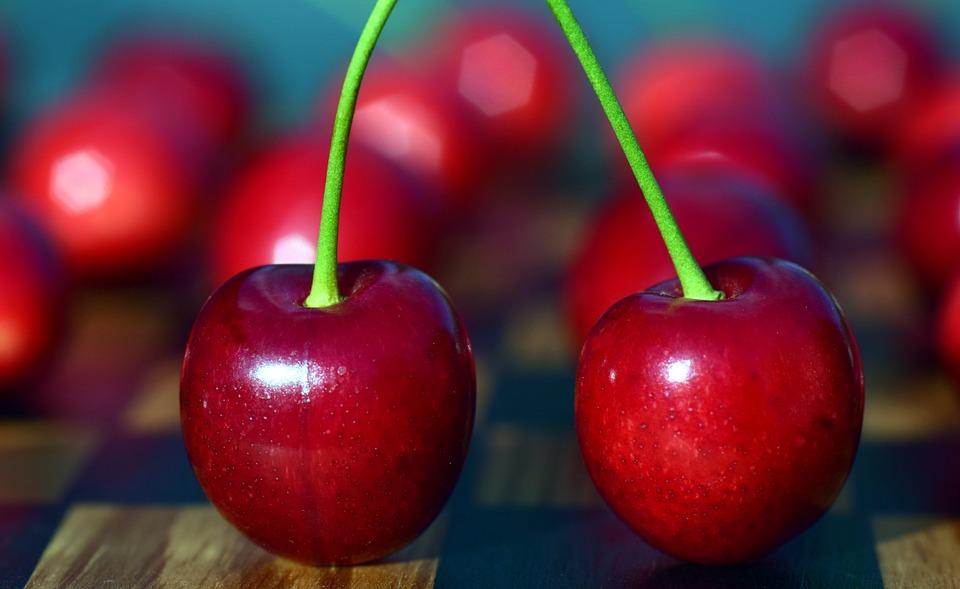 cherries red fruit free photo on pixabay