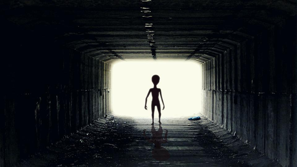 Free photo Ufo Alien Guy Pozaziemianin Free Image on Pixabay