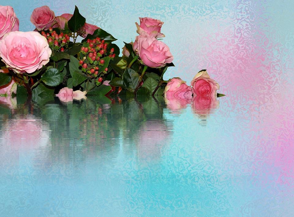 Розы фотки цветы