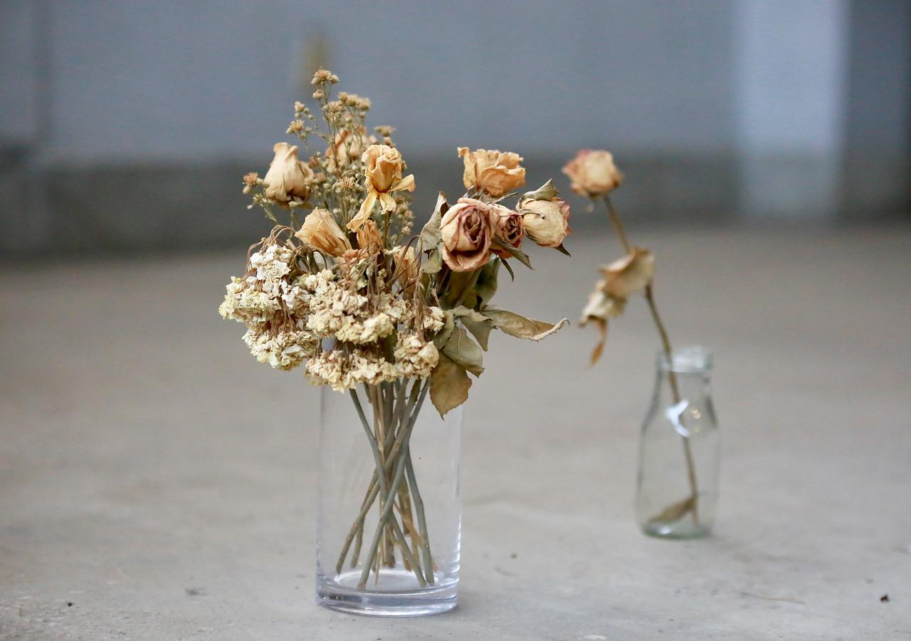 Картинка засохшие цветы в вазе