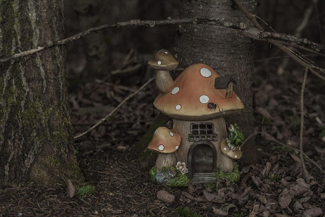 меня домики грибы фото готовы утра