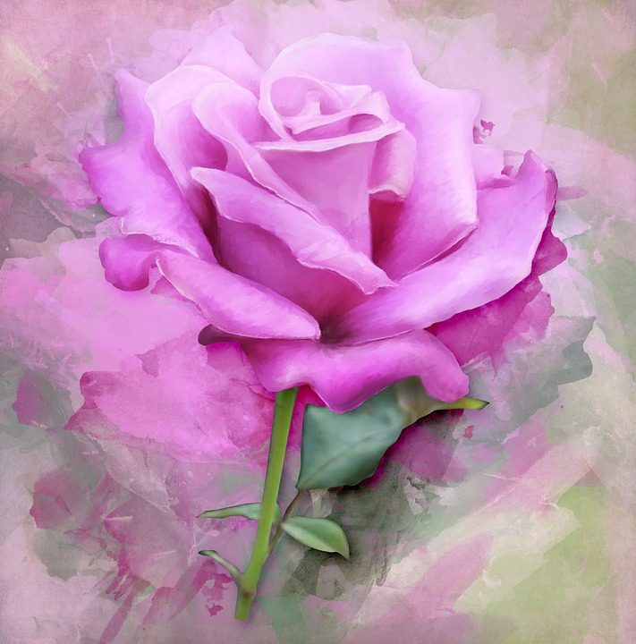illustration gratuite rose peinture art floraux fleur