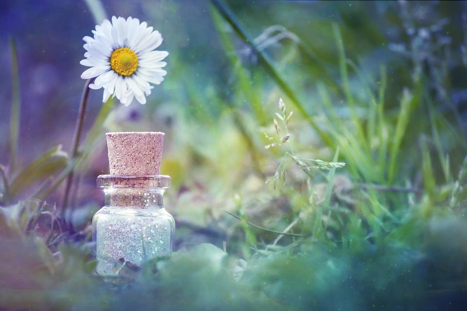flower petal manipulation