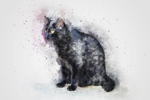 Zdarma černé kočičky klipy