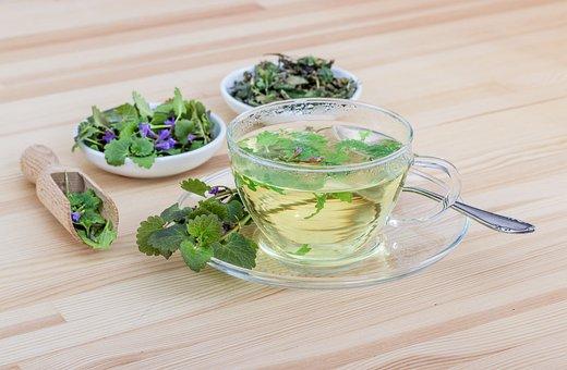 Tee, Herbs, Herbal Tea, Healthy, Drink