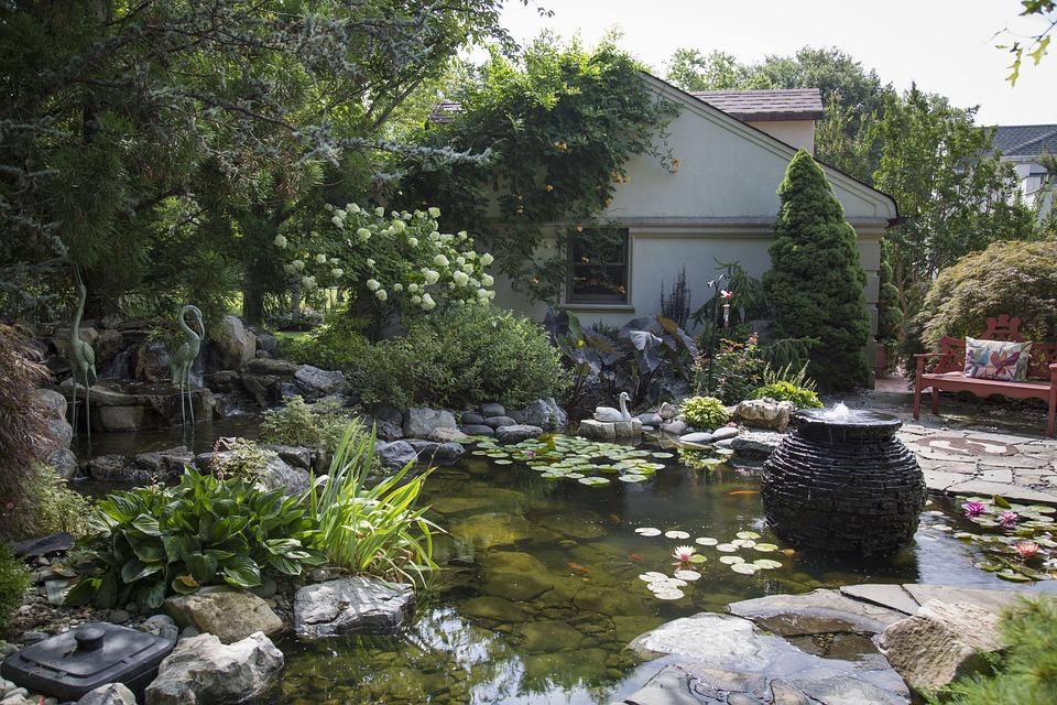 Koi Pond, Ponds, Water, Koi, Fish, Garden, Nature