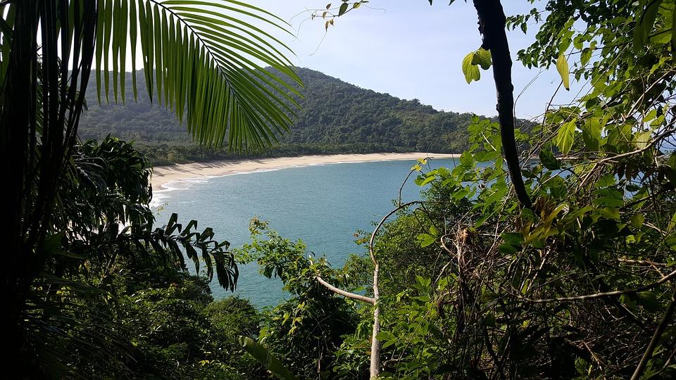 Praia, Mar, Areia, Natureza. Ubatuba