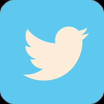 Twitter, Social Media, Icon, Social