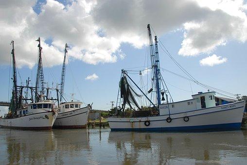 エビのボート, Netter, ネット, 商業漁業, 業種, 釣り, 商業, 海