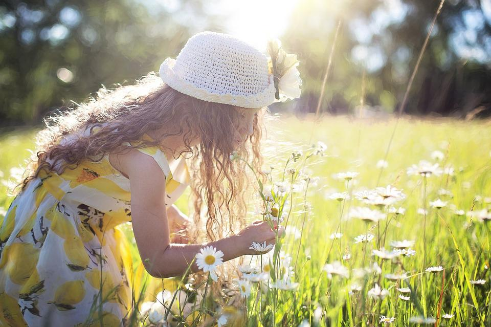 Picking Flowers, Daisies, Little Girl, Child, Nature
