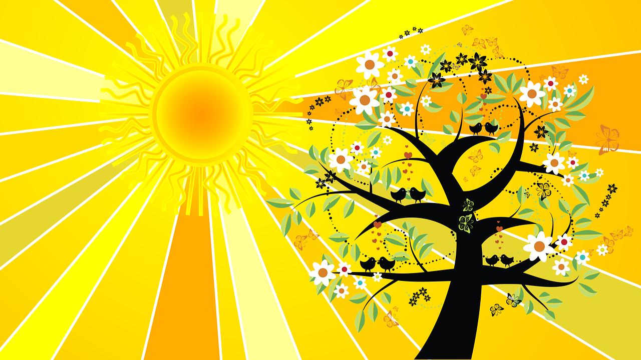 Summer Solstice Sun Rays Free Image On Pixabay