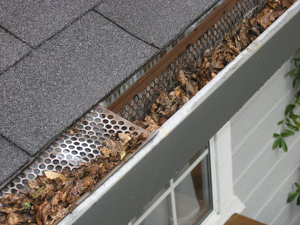 Gutter with Dry Leaves