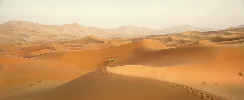 Desert, Morocco, Dunes, Sand